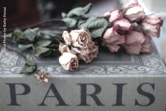 Paris and Roses