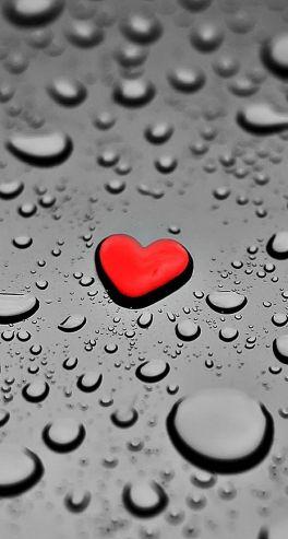 rain heart