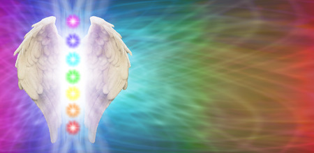 31283343 - angel chakra wings on rainbow colored banner background