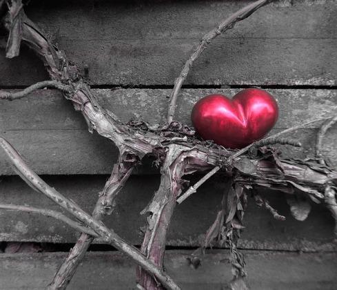 heart-1265200_640