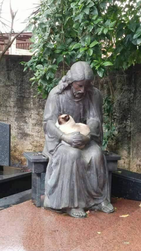 Kitty and Jesus