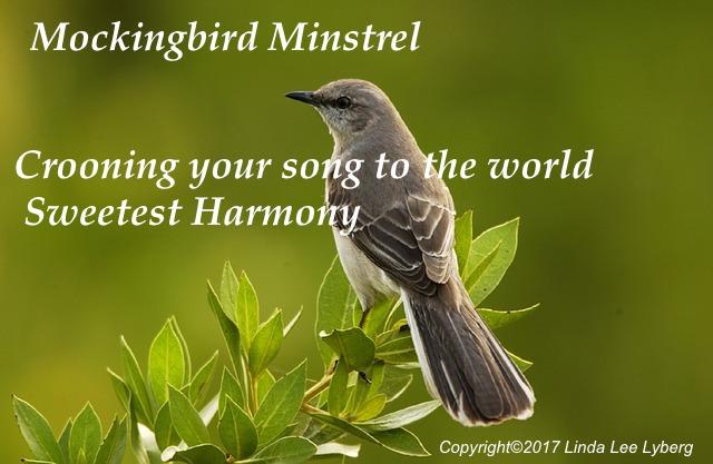 mockingbird-702804_640