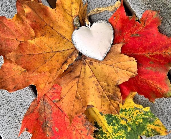 leaves-2808547_1280