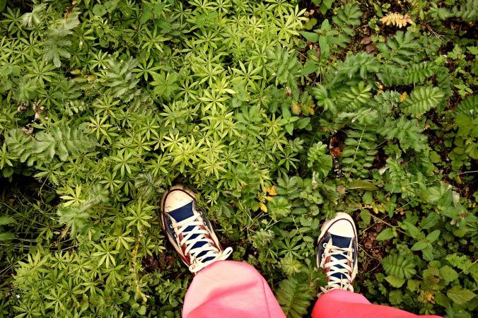 foot-1465684_1280