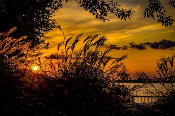 sunset-2908900_1920