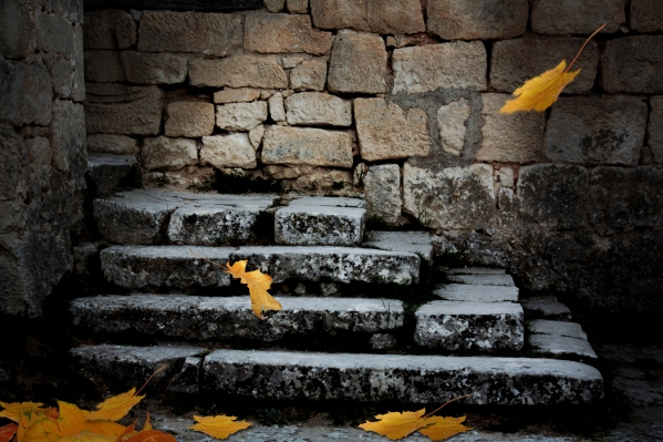 Old stone staircase with fallen leaves in the ominous moonlight