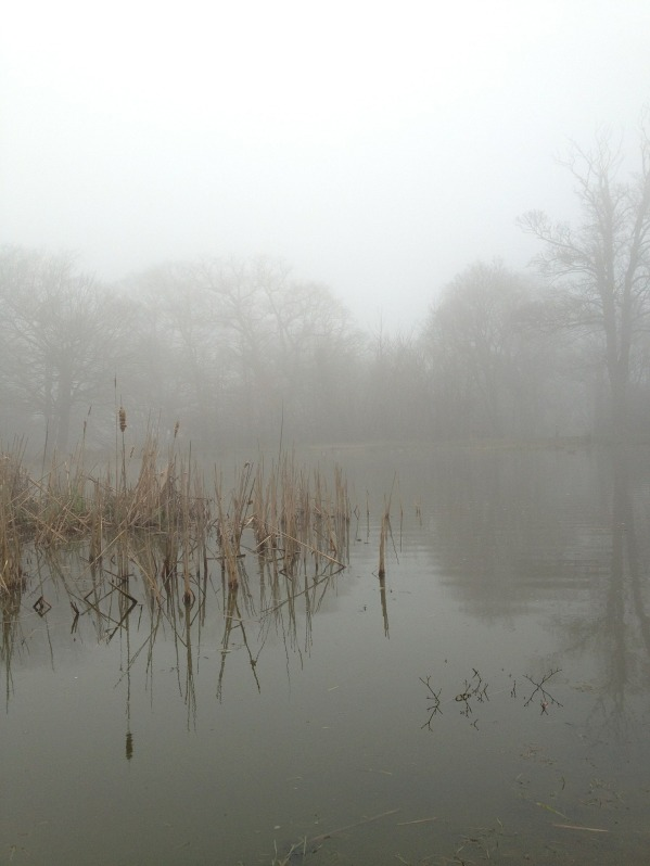mist-477640_1920
