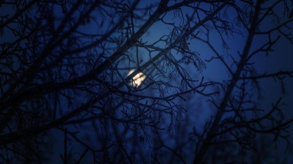blue-night-1252017_1920