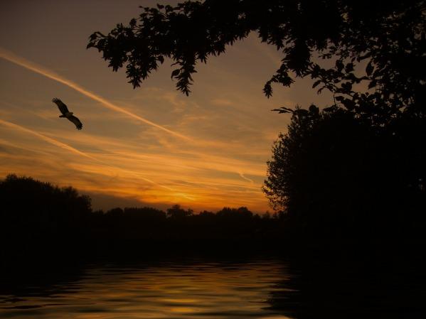 sunset-113193_1920