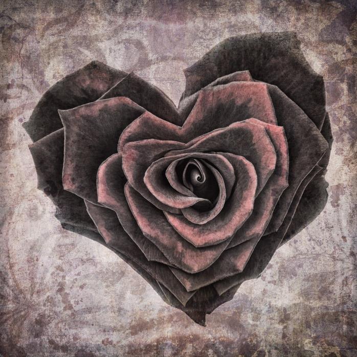 heart-1205291_1280