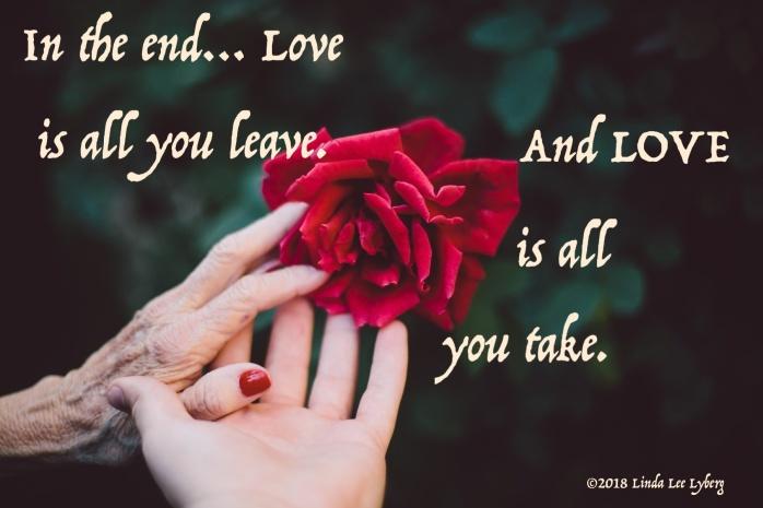 hand-plant-photography-flower-petal-love-60781-pxhere.com