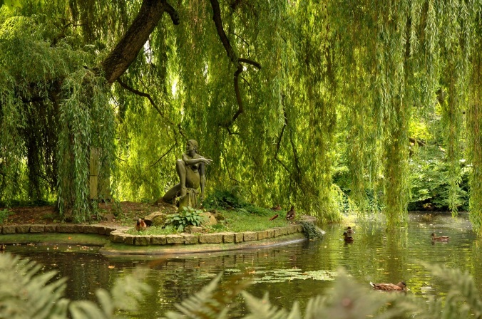landscape-tree-water-nature-forest-swamp-1164548-pxhere.com