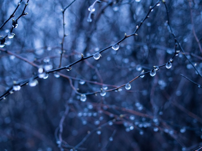rain-drops-926583_1280