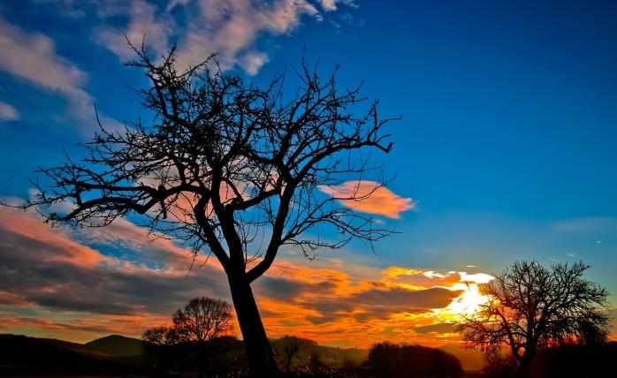 sunset-229335_1280