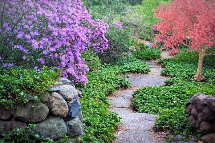 spring-3404740_1280