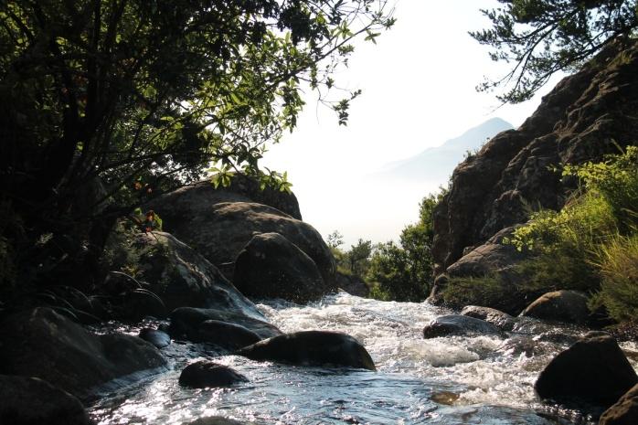 nature-forest-rock-creek-river-stream-100135-pxhere.com
