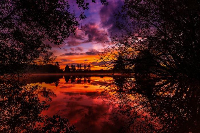 autumn-2949642_1280