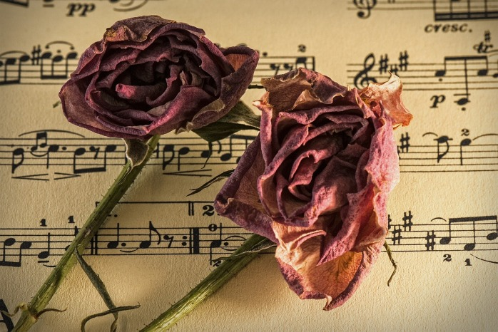 sheet-music-944796_1280