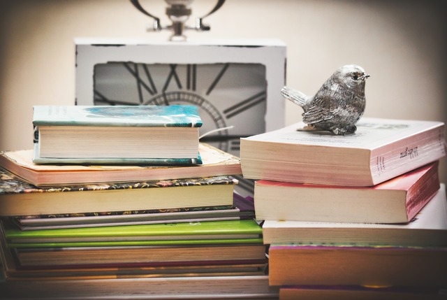 books-3786561_640