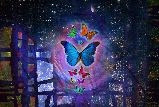 butterfly-1057516_640